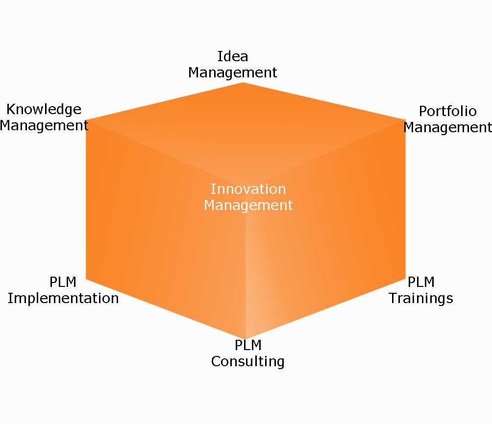 BrainWave Consulting Service Portfolio
